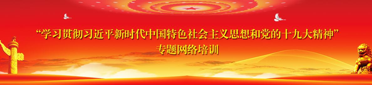 """""""学习贯彻习近平新时代中国特色社会主义思想和党的十九大精神""""专题网络培训"""